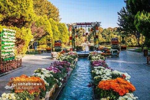 نمایشگاه گل های داوودی اصفهان (20)