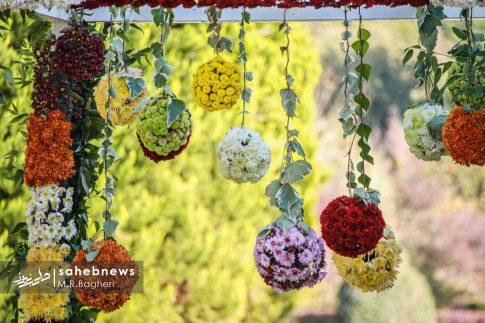 نمایشگاه گل های داوودی اصفهان (22)