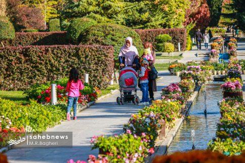 نمایشگاه گل های داوودی اصفهان (24)