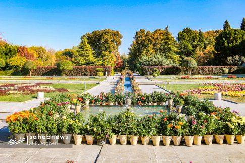 نمایشگاه گل های داوودی اصفهان (3)
