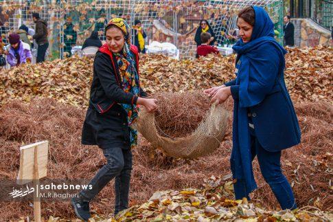 جشنواره پاییزی اصفهان (13)
