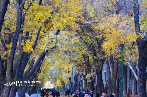 چهارباغ اصفهان (13)