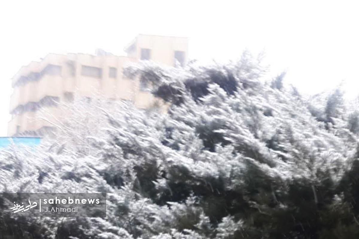برف اصفهان (1)