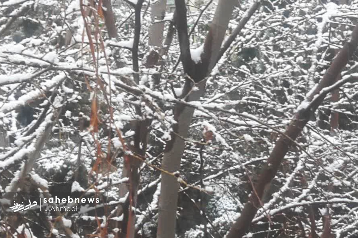 برف اصفهان (22)