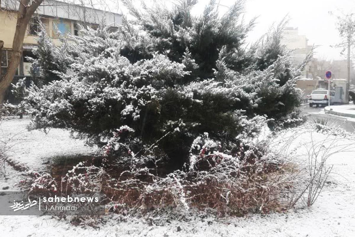 برف اصفهان (9)