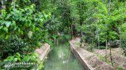 مادی های اصفهان (8)