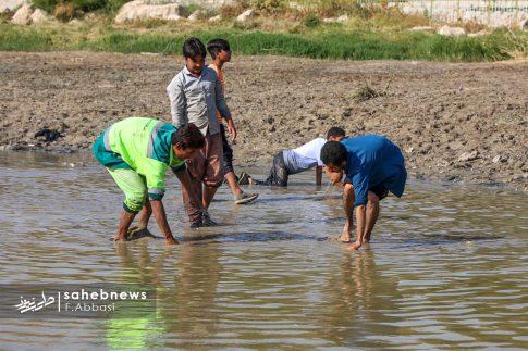مرگ ماهی های زاینده رود (13)
