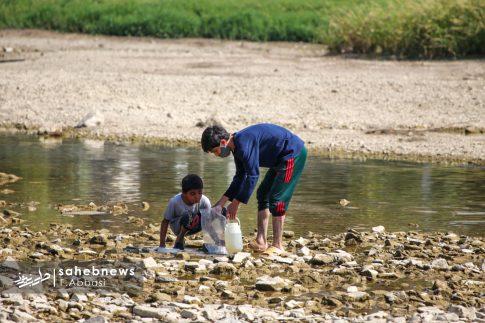 مرگ ماهی های زاینده رود (5)