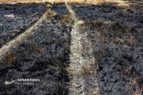 آتش در زاینده رود (19)