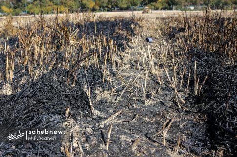 آتش در زاینده رود (24)