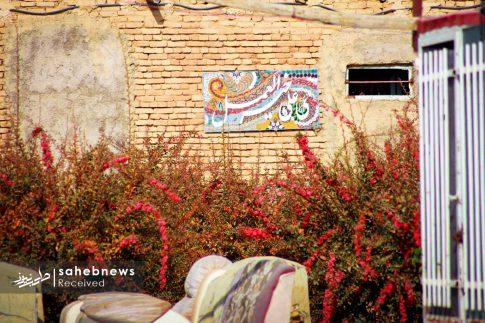 برداشت زرشک از 10 هکتار اراضی شهرستان برخوار (20)