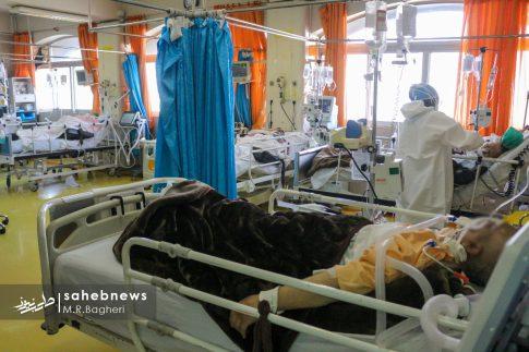 بیمارستان الزهرا (س) (11)