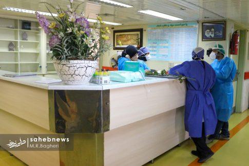 بیمارستان الزهرا (س) (20)