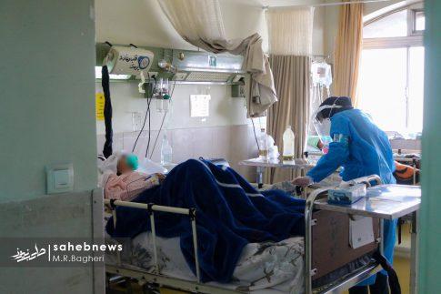 بیمارستان الزهرا (س) (29)