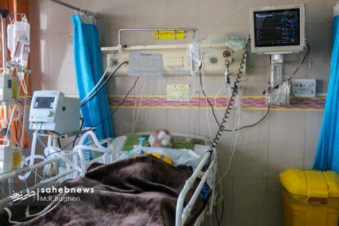 بیمارستان الزهرا (س) (5)