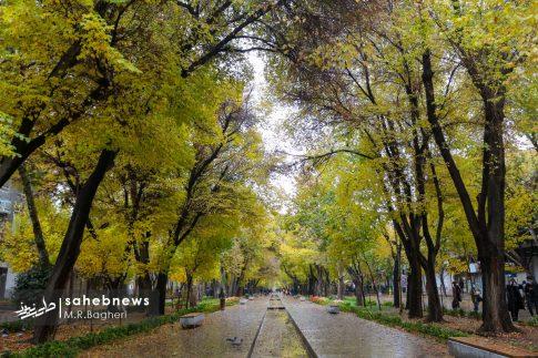 پاییز اصفهان (17)